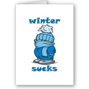 winter_sucks_card-p137175411435461396bh2r3_400