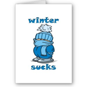 winter_sucks_card-p137175411435461396bh2r3_400