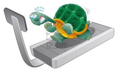 5450545-schildkrote-fitness-cartoons-und-vektor-charakter http://us.123rf.com/
