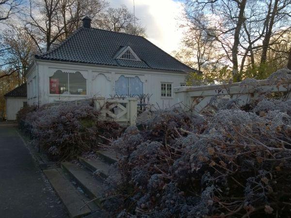 Winter11a