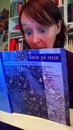 BlogSteinpastein